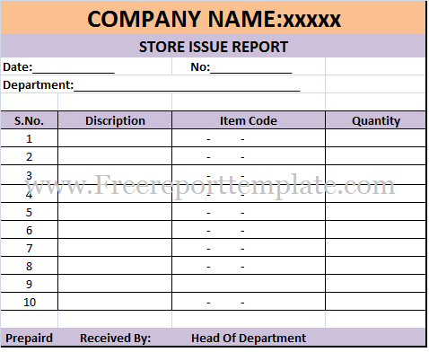 Store Issue Report Template
